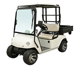 Electric Golf Cart DU-C2 with EEC