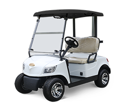 2 Seater Electric Golf Cart DG-M2