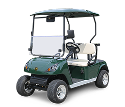 2 Seater Electric Golf Cart DG-C2-5